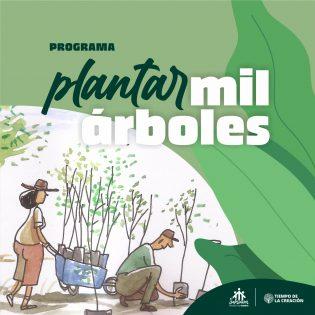 Plantar mil árboles